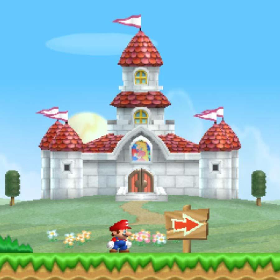 New Super Mario Bros Wii.