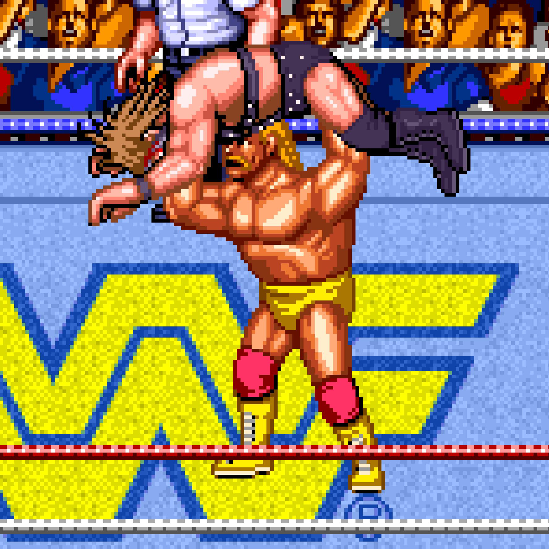 WWF WrestleFest.